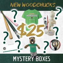 Woody's Mystery Box